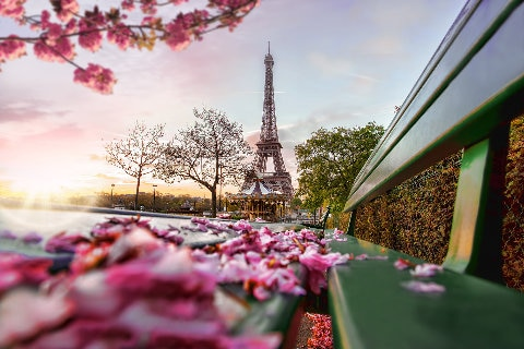 Eiffel tower spring time