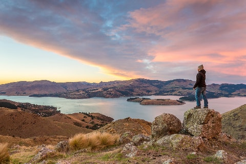 Man overlooking sunrise in Christchurch