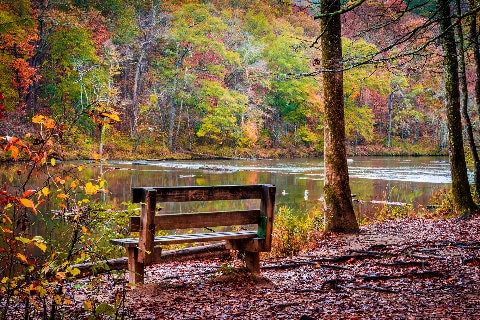 Park bench in Autumn