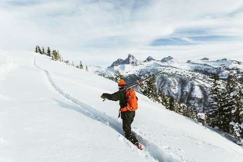 Skiier at Alta