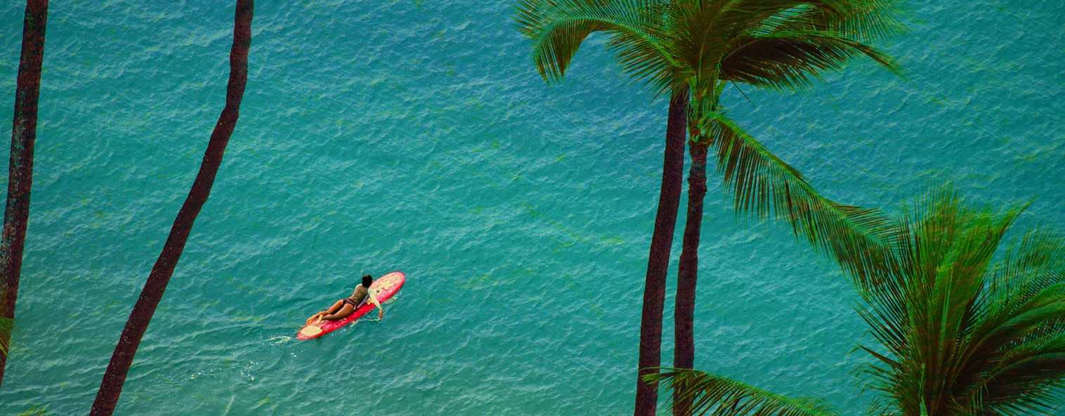 Woman paddling on blue ocean under palm trees in Hawaii