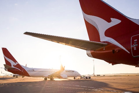 Qantas planes on the tarmac