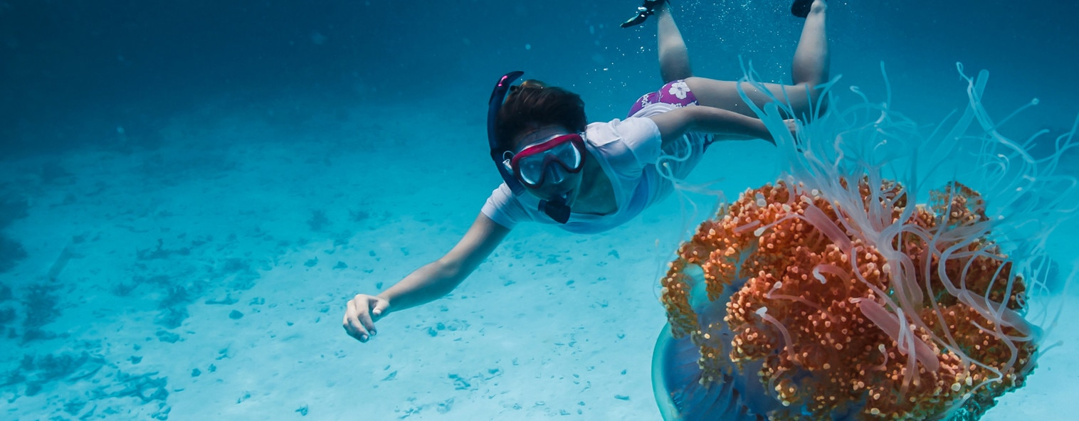 A girl snorkelling next to jellyfish